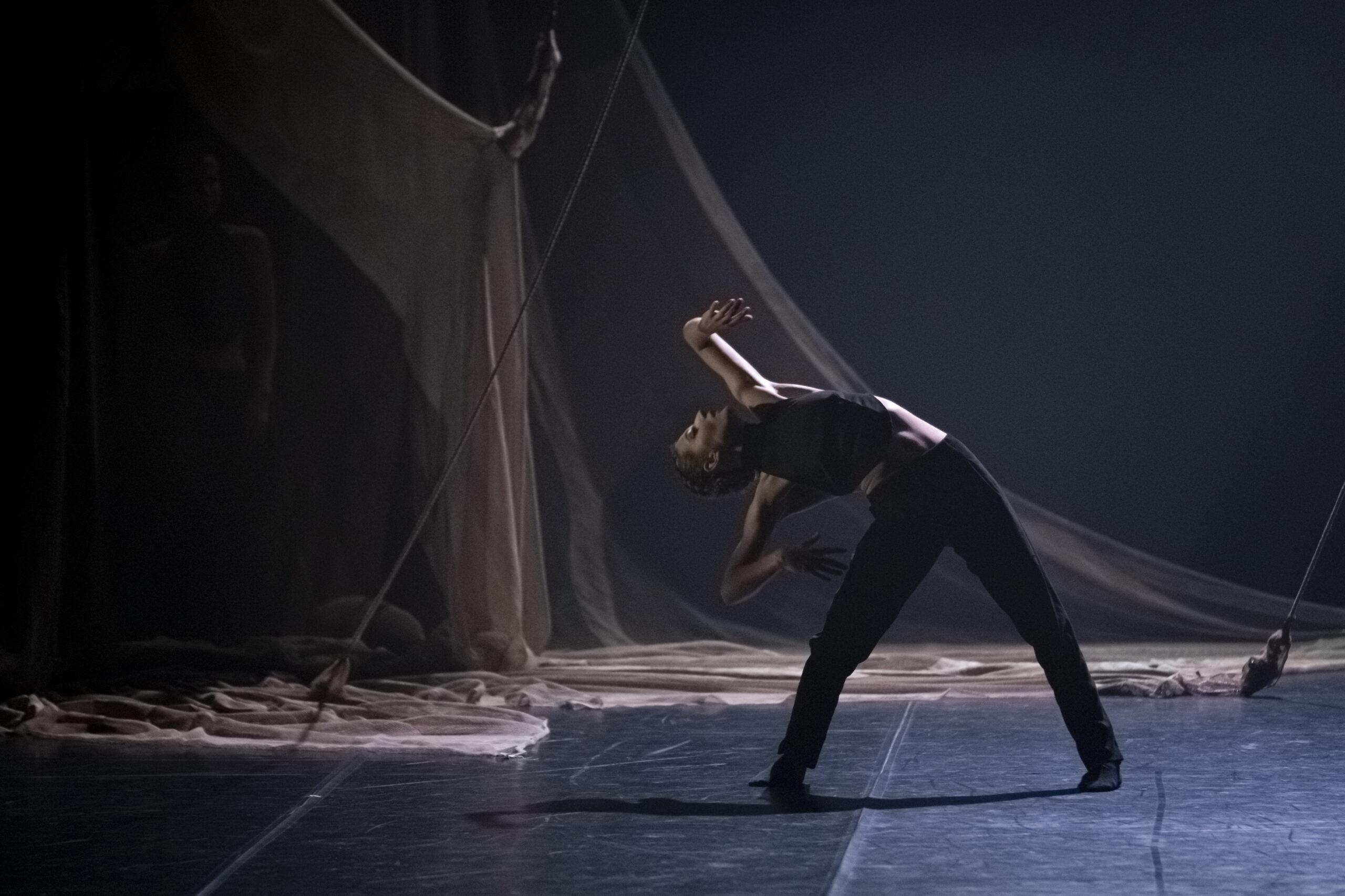 Il viaggio onirico di MM Contemporary Dance Company tra natura e emozioni musicali  conquista il pubblico a Trento